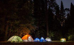 camping foret des landes