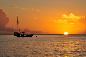 activité Guadeloupe